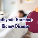 parathyroid-hormone-and-kidney-disease